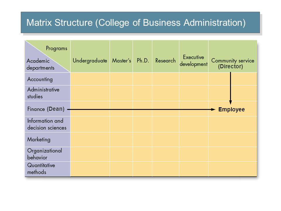 Matrix Structure (College of Business Administration)