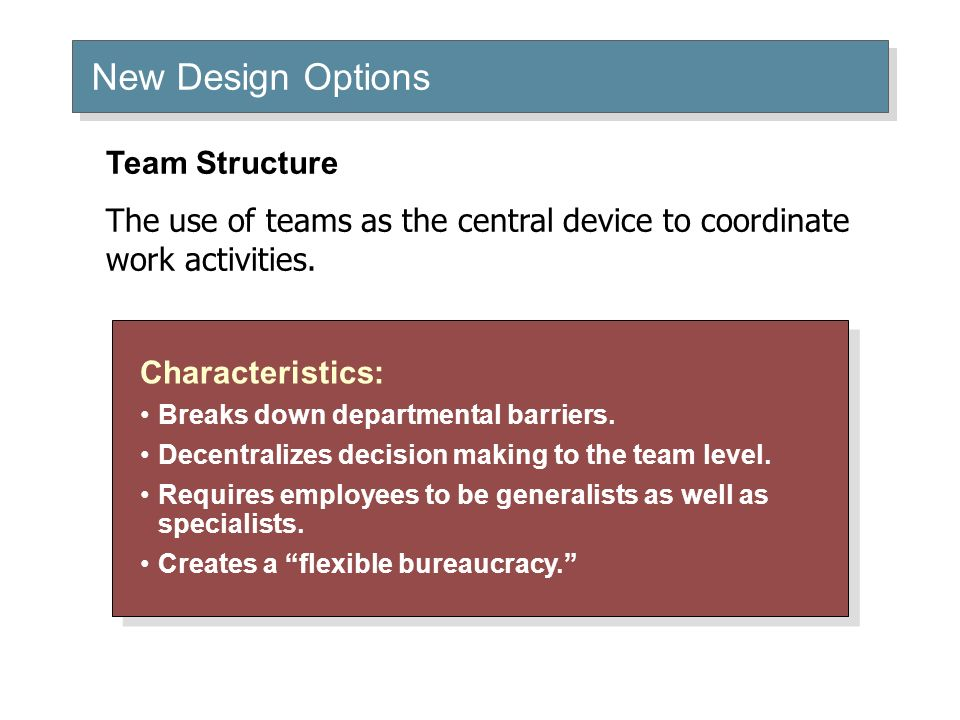 New Design Options Team Structure
