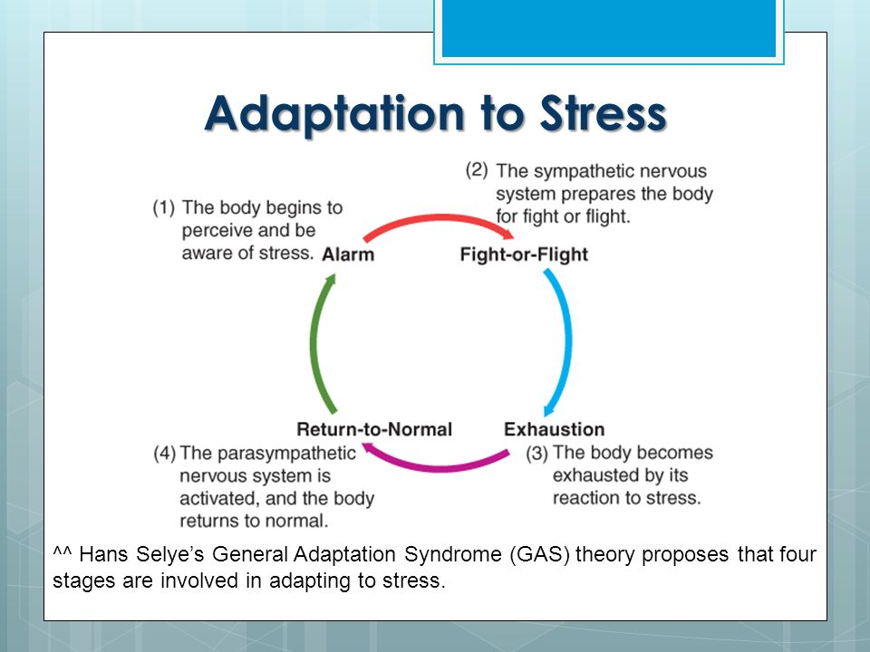 gas stages of stress