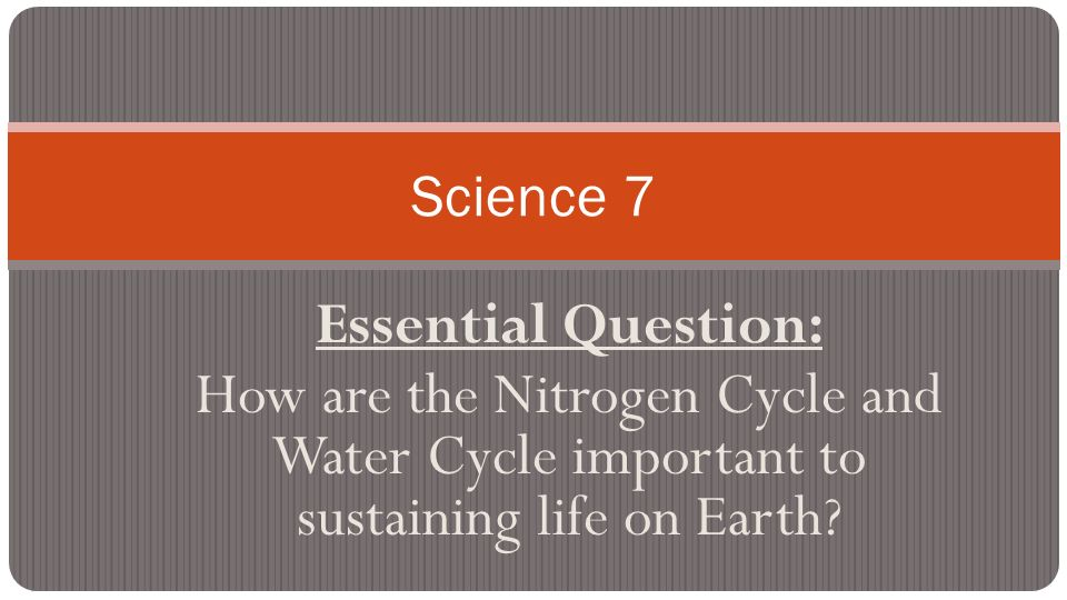 a report on the importance of water to life on earth The importance of water on life essayswater has many roles in living organisms and life on earth is impossible without it it makes up between 60% and 95% of the fresh mass of the organisms.
