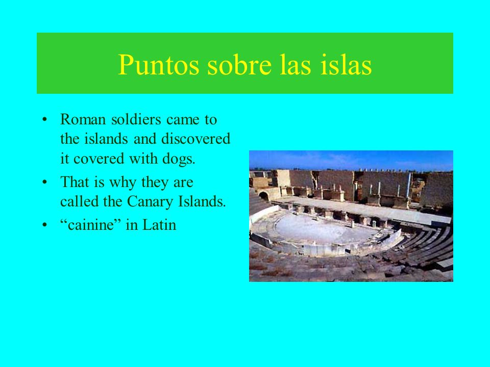 Puntos sobre las islas Roman soldiers came to the islands and discovered it covered with dogs. That is why they are called the Canary Islands.