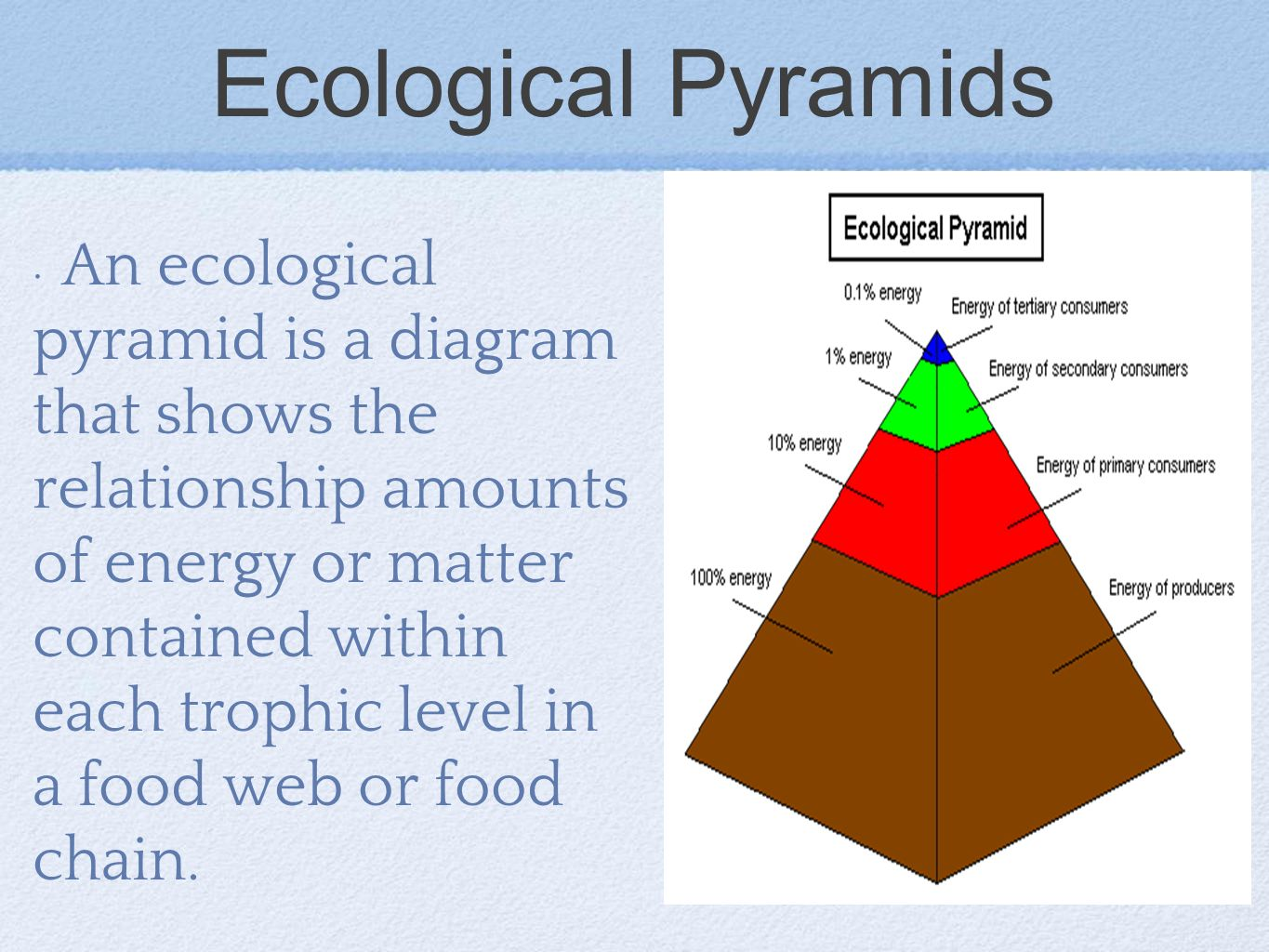Ecological Pyramids: Pyramid of Numbers, Biomass & Energy