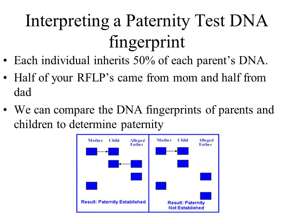 bilogy dna fingerprinting essay A dna fingerprint is a piece of dna so distinct that it can prove a person's identity these distinct areas can take on many different forms, but each form is unique to any one individual the probability that two people received exactly the same number of repeated sequences from their two parents is one in.