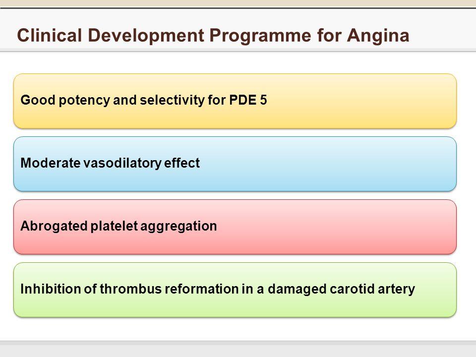 Angina and viagra