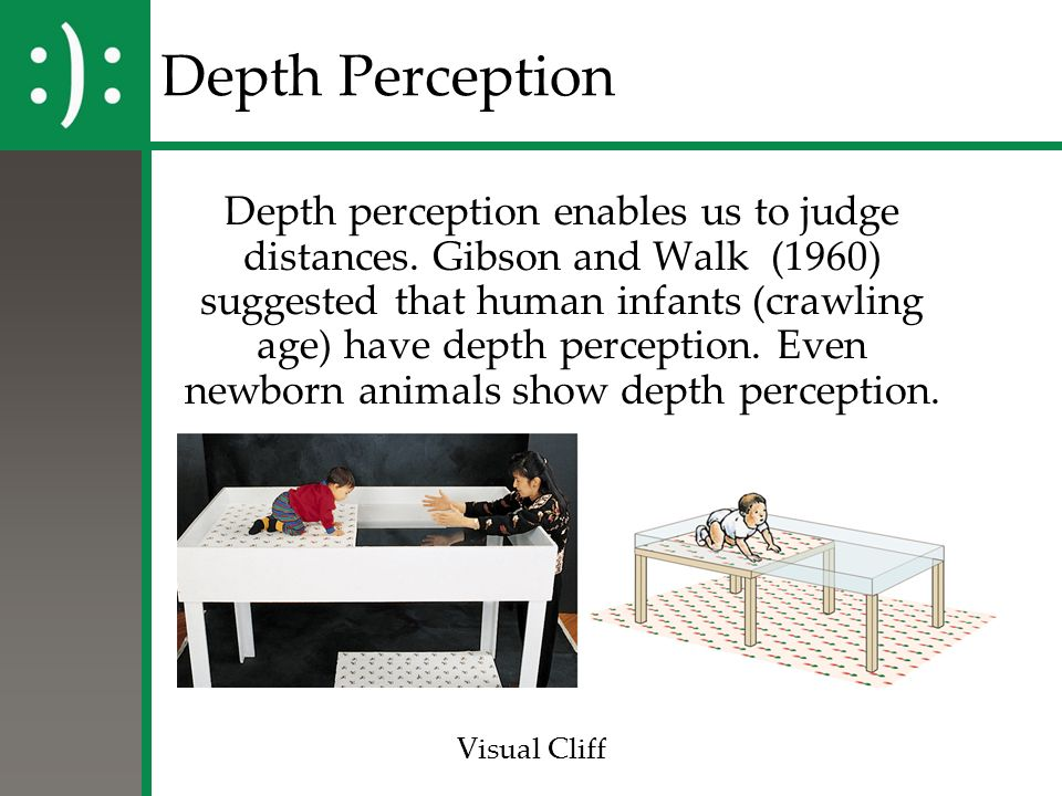 discuss the importance of visual perception The influence of culture on visual perception students of perception, facts that delineate the important role of an individual's experiences in his subsequent perceptions, enhance the plausibility of this proposition.