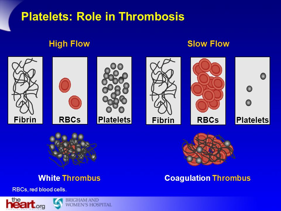 Platelets: Role in Thrombosis
