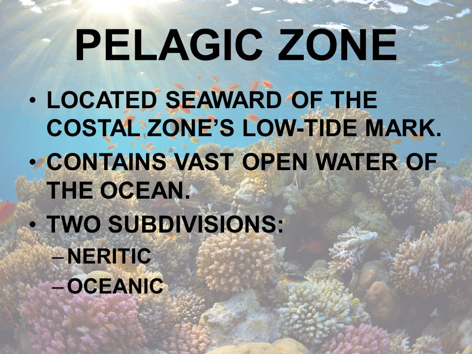PELAGIC ZONE LOCATED SEAWARD OF THE COSTAL ZONE'S LOW-TIDE MARK.