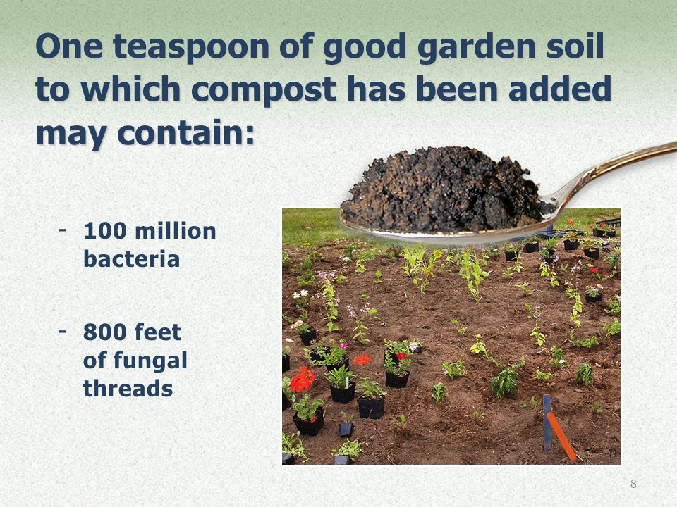 Making and using compost in your backyard ppt download for What does soil contain