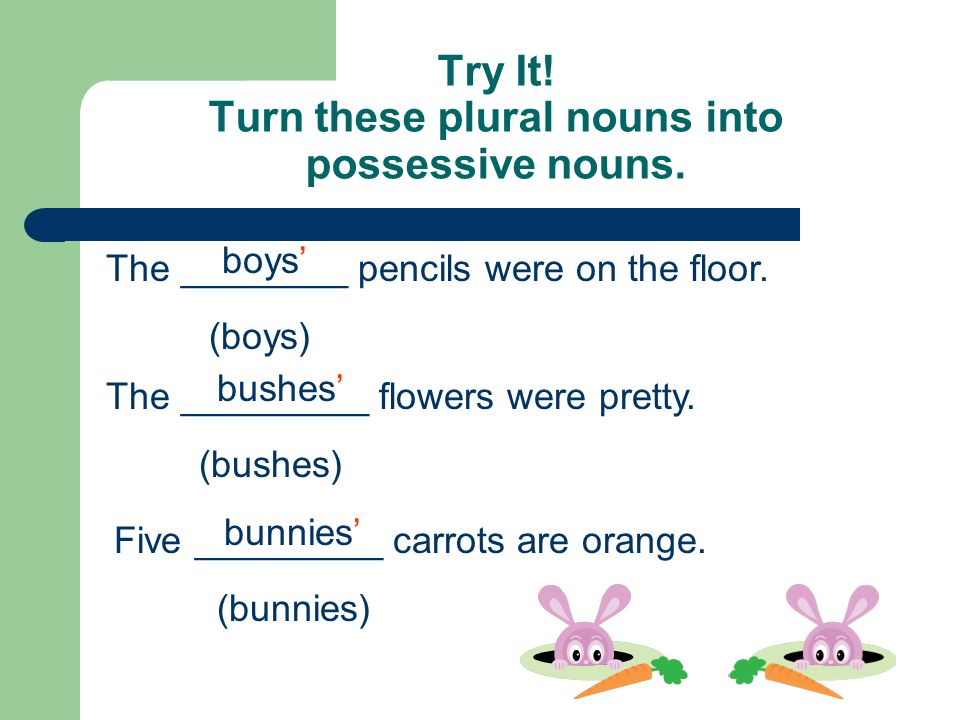 Possessive nouns ppt video online download for Plural of floor