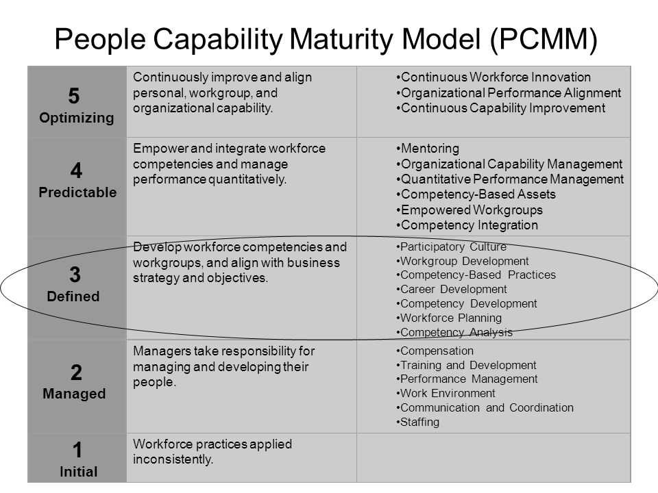 Organizational development maturity model