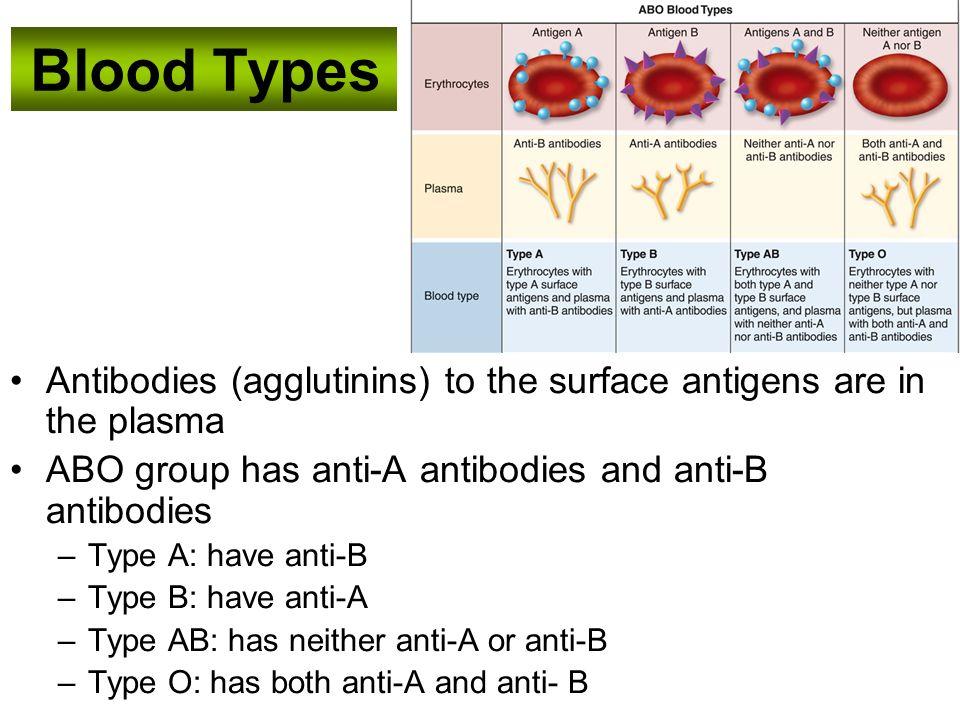 O Antibodies Essentials of H...