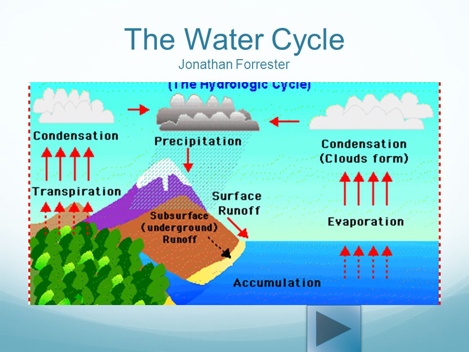 1 The Water Cycle Jonathan Forrester