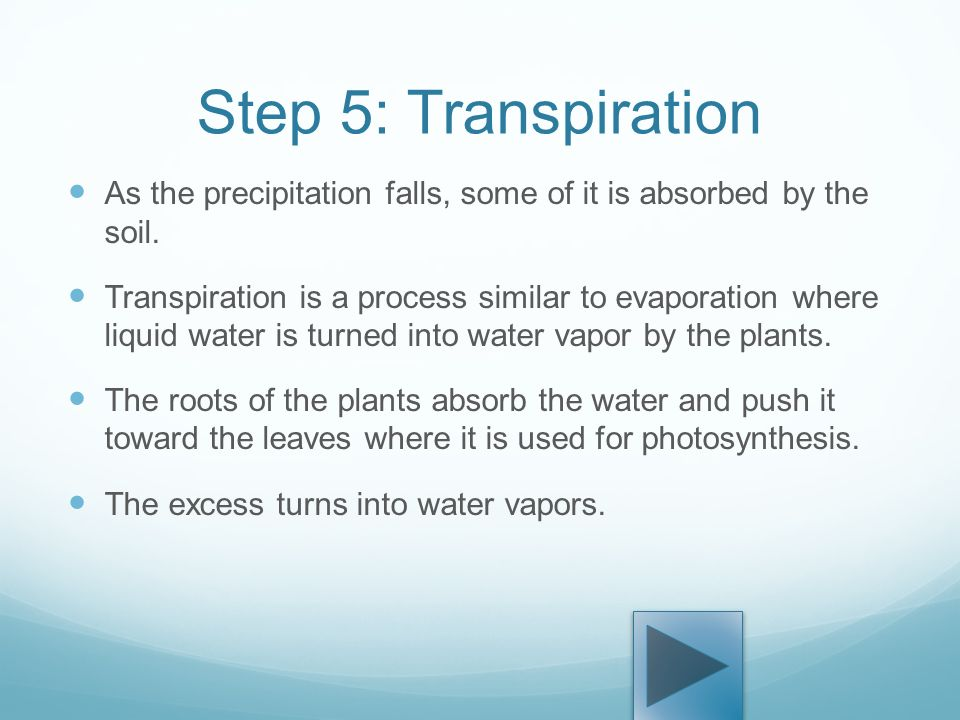 process of photosynthesis step by step Plants use a process called photosynthesis to make food and oxygen step-by-step career guide photosynthesis lesson for kids: process & steps related study.