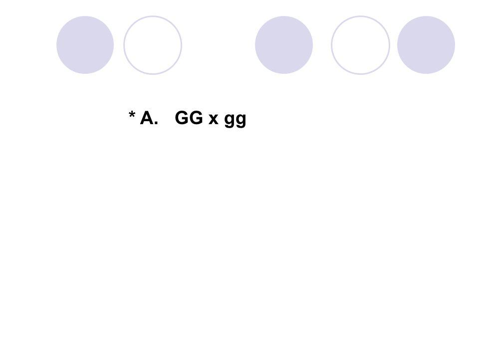 * A. GG x gg