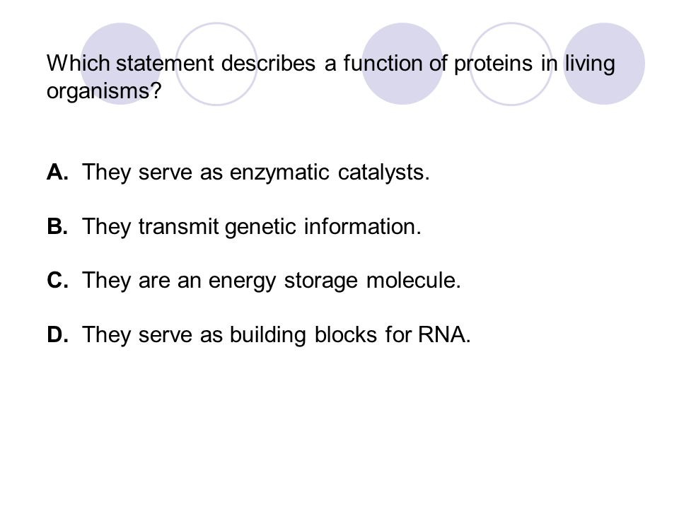 Which statement describes a function of proteins in living organisms