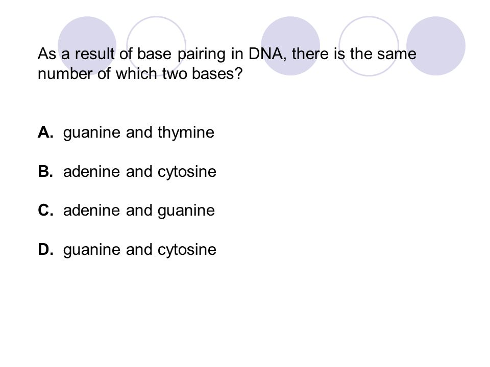 As a result of base pairing in DNA, there is the same number of which two bases