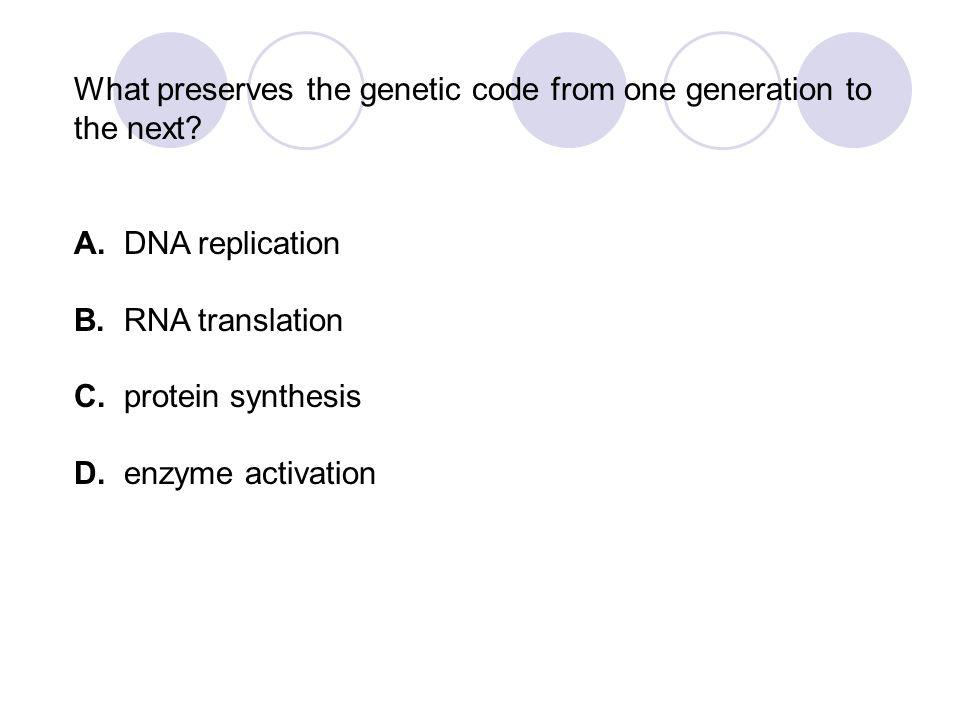 What preserves the genetic code from one generation to the next