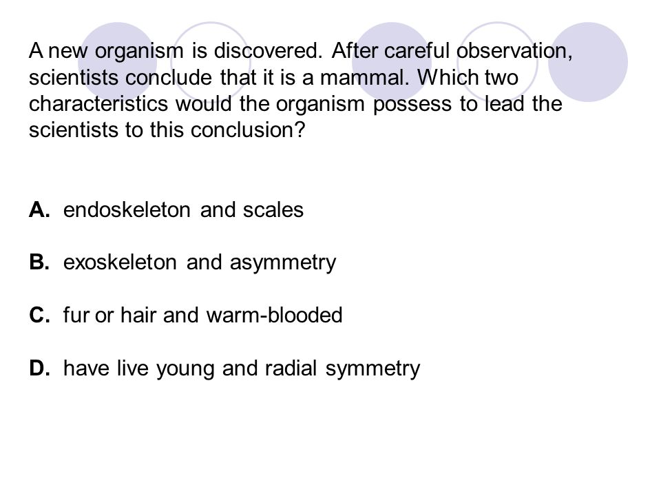 A new organism is discovered