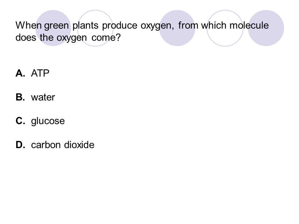 When green plants produce oxygen, from which molecule does the oxygen come