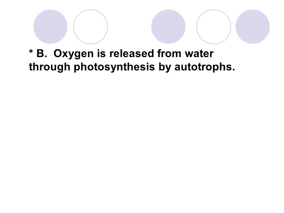 * B. Oxygen is released from water through photosynthesis by autotrophs.