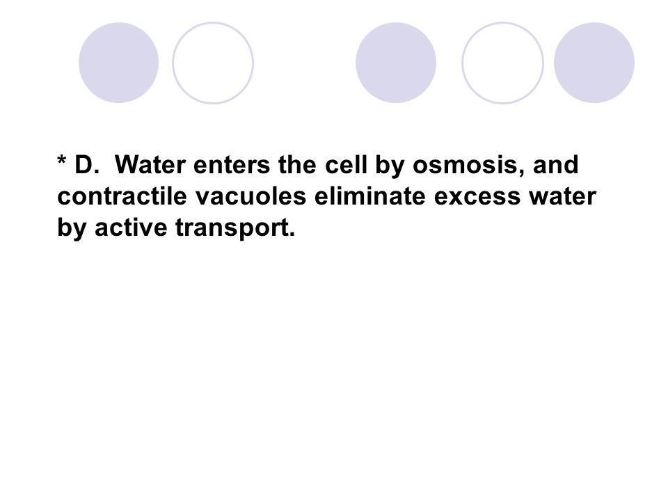 * D. Water enters the cell by osmosis, and