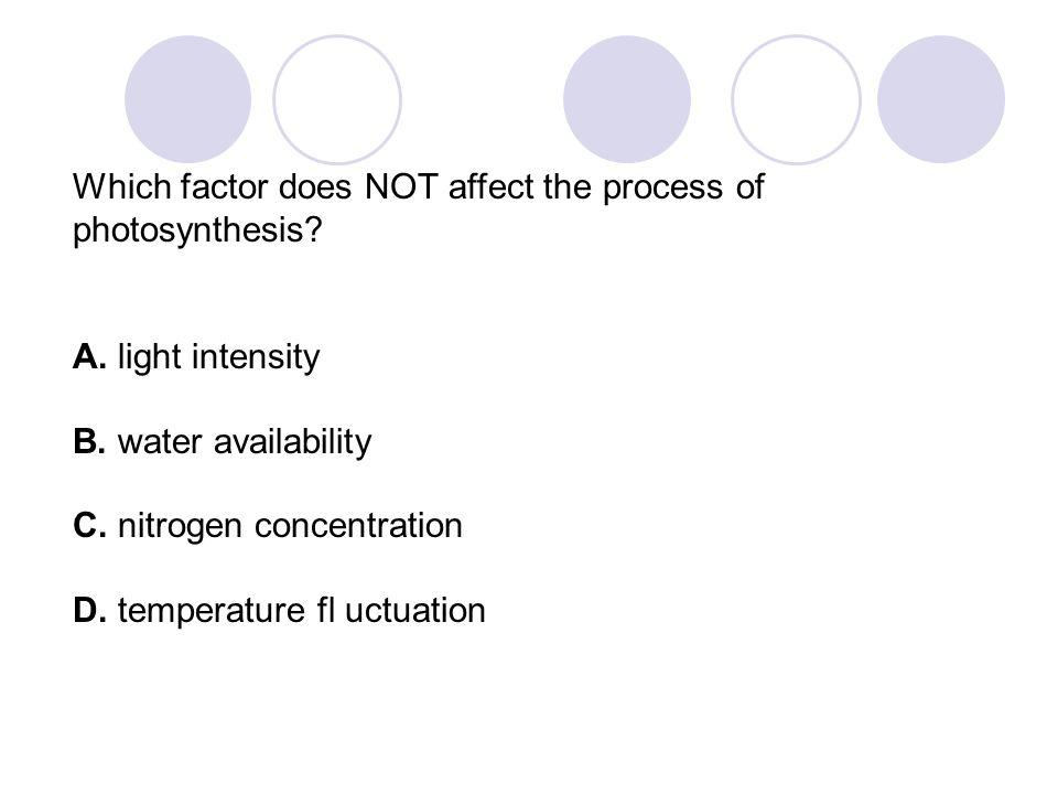 Which factor does NOT affect the process of photosynthesis