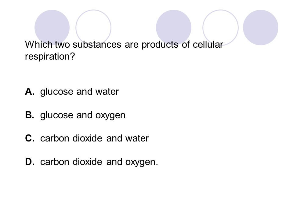 Which two substances are products of cellular respiration