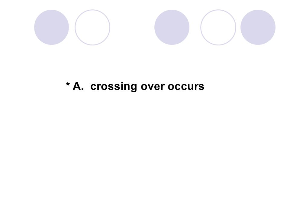 * A. crossing over occurs
