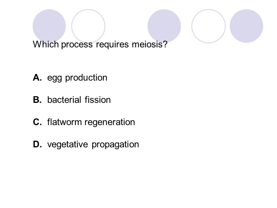 Which process requires meiosis
