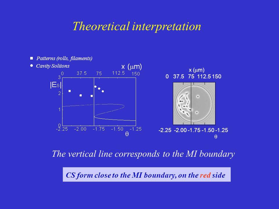 Theoretical interpretation