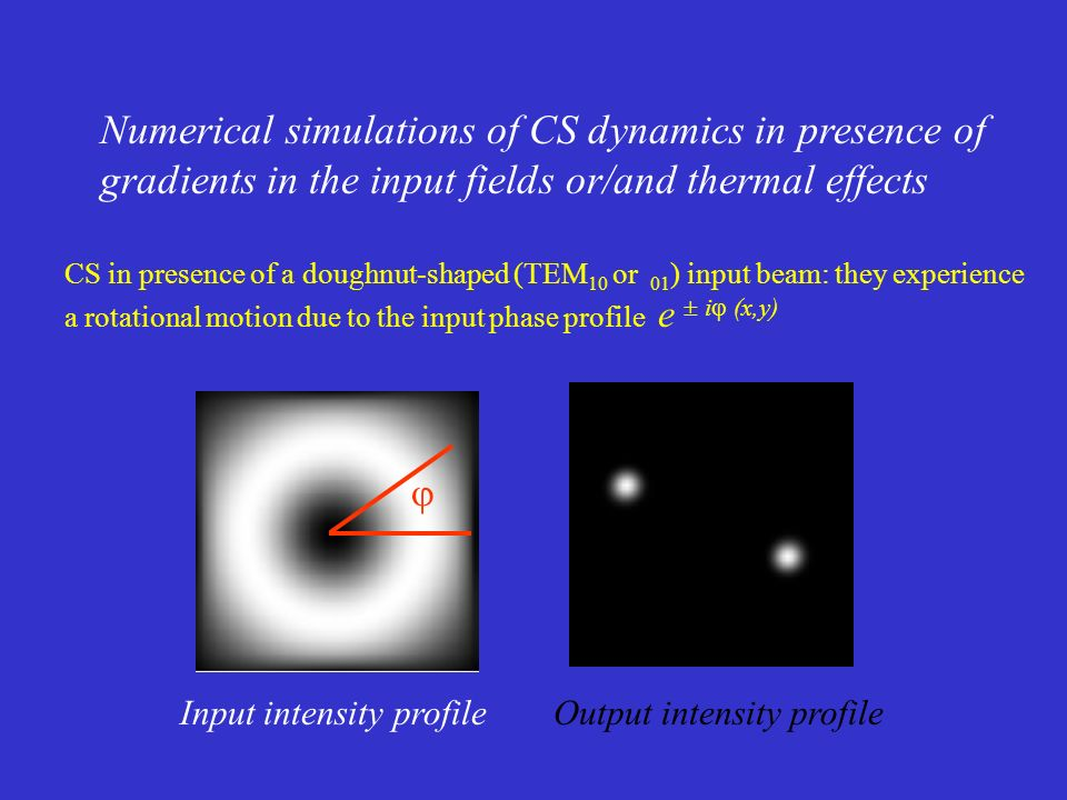 Numerical simulations of CS dynamics in presence of