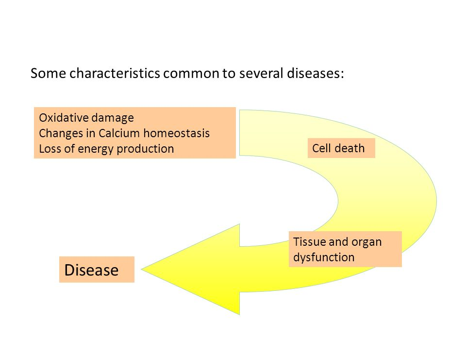 Disease Some characteristics common to several diseases: