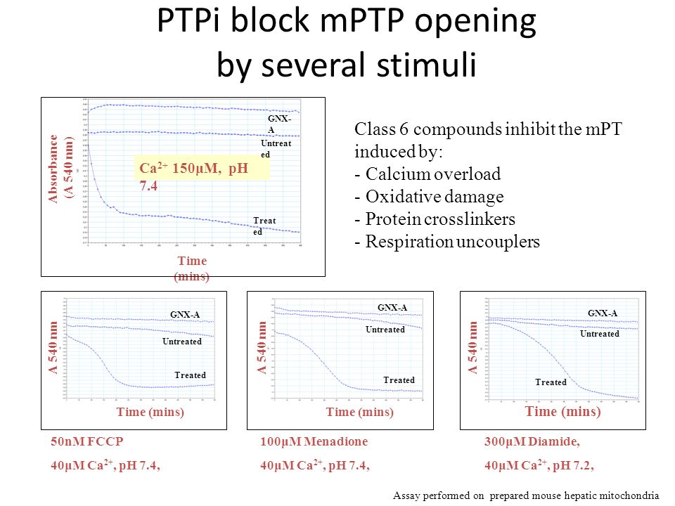 PTPi block mPTP opening by several stimuli