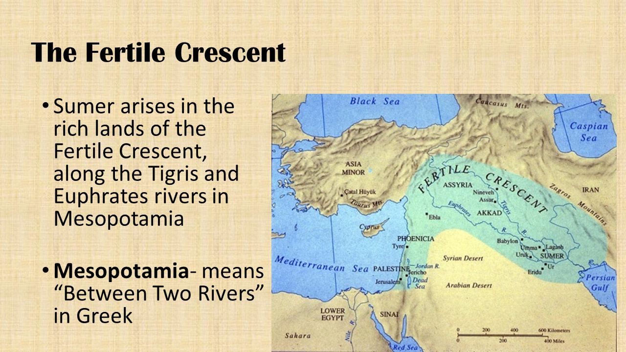 The Fertile Crescent Sumer arises in the rich lands of the Fertile Crescent, along the Tigris and Euphrates rivers in Mesopotamia.