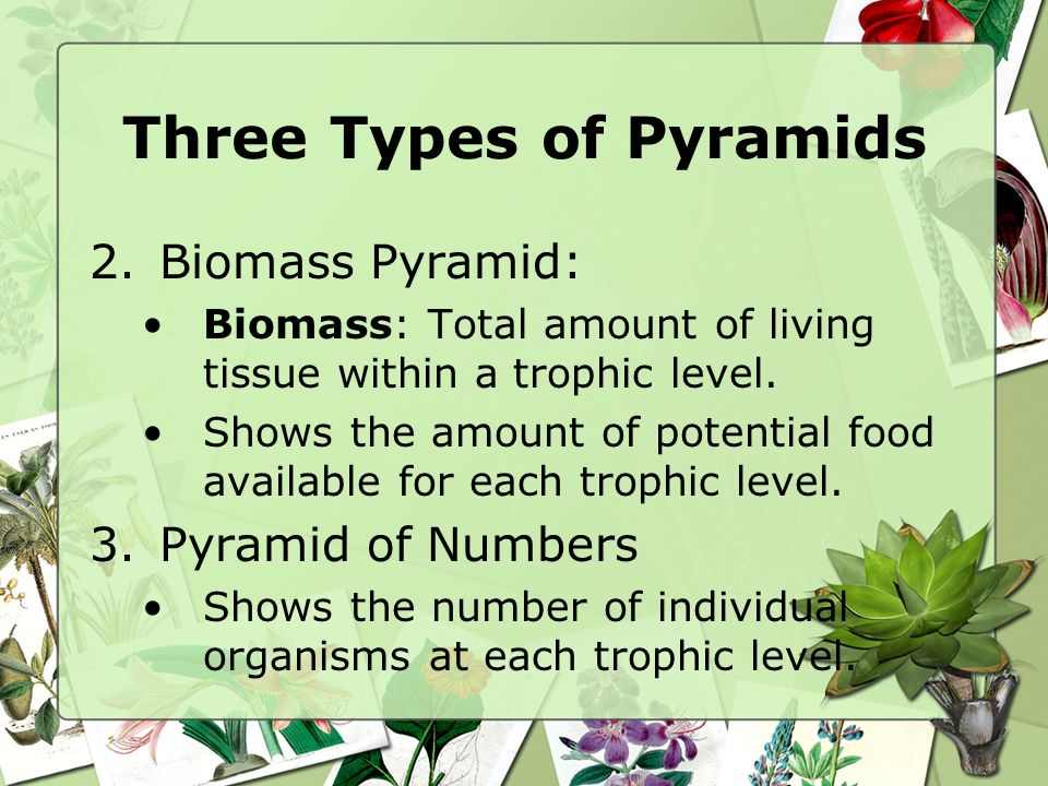 Three Types of Pyramids