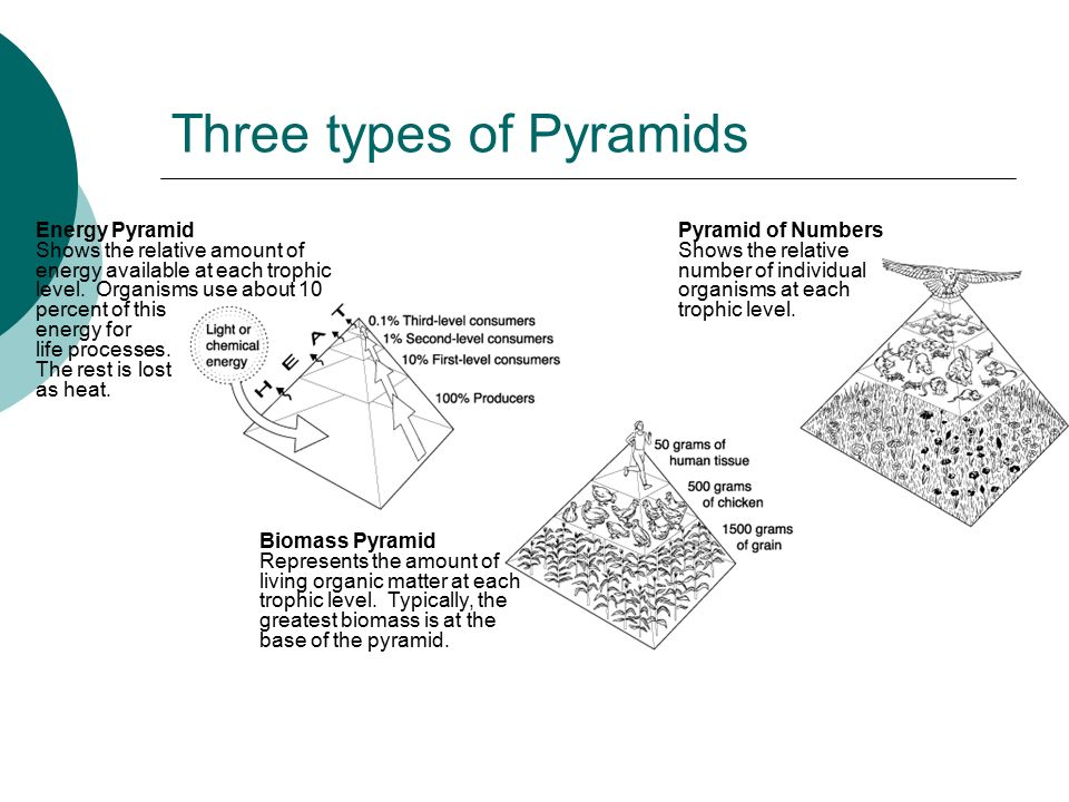 Three types of Pyramids
