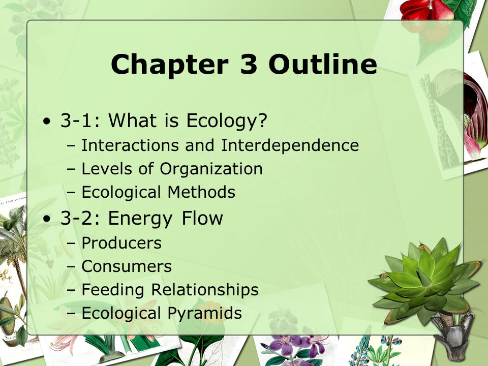 Chapter 3 Outline 3-1: What is Ecology 3-2: Energy Flow
