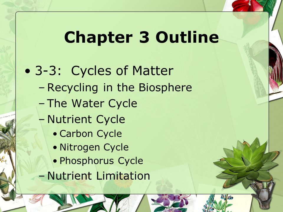 Chapter 3 Outline 3-3: Cycles of Matter Recycling in the Biosphere