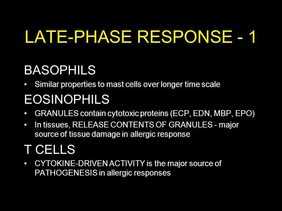 LATE-PHASE RESPONSE - 1 BASOPHILS EOSINOPHILS T CELLS