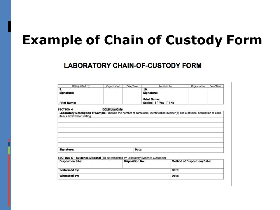 Example of Chain of Custody Form