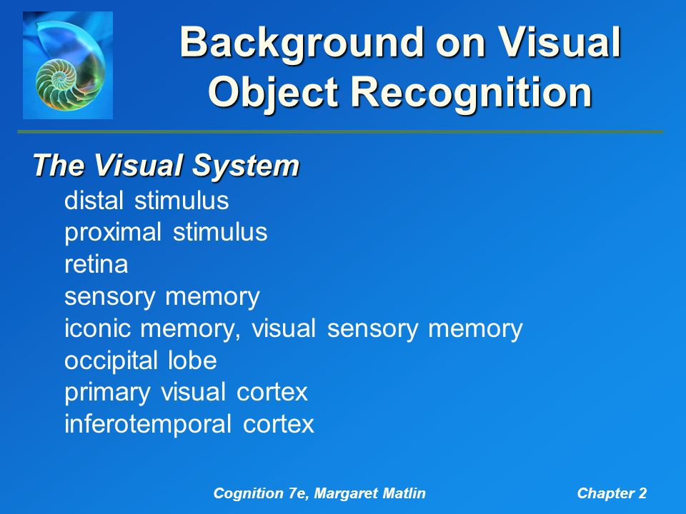 a study on visual object recognition system Gauthier studies visual object recognition, with particular emphasis on the plasticity of recognition mechanisms and their neural substrate one issue that is of particular interest to her is how the visual system organizes itself into what appears to be category-specific modules.