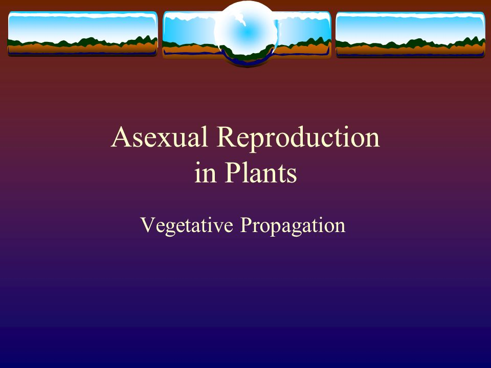 Main features of asexual reproduction video