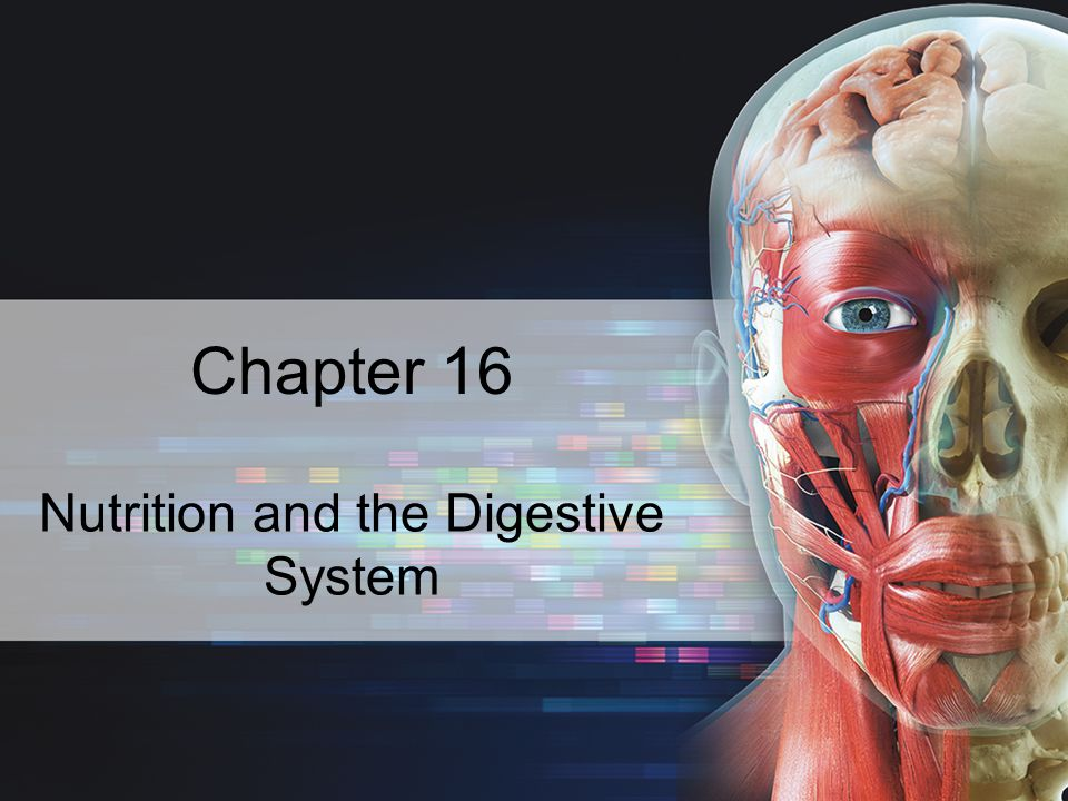 nutrition and the digestive system Information that will help you understand how fish digestion works and thus get a better understanding of how and what to  the digestive system in fish is.