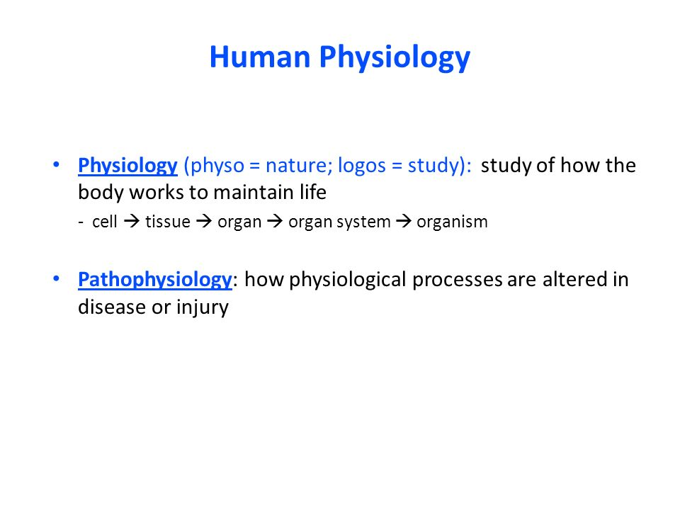 A Body Of Knowledge Based On The Study Of Nature