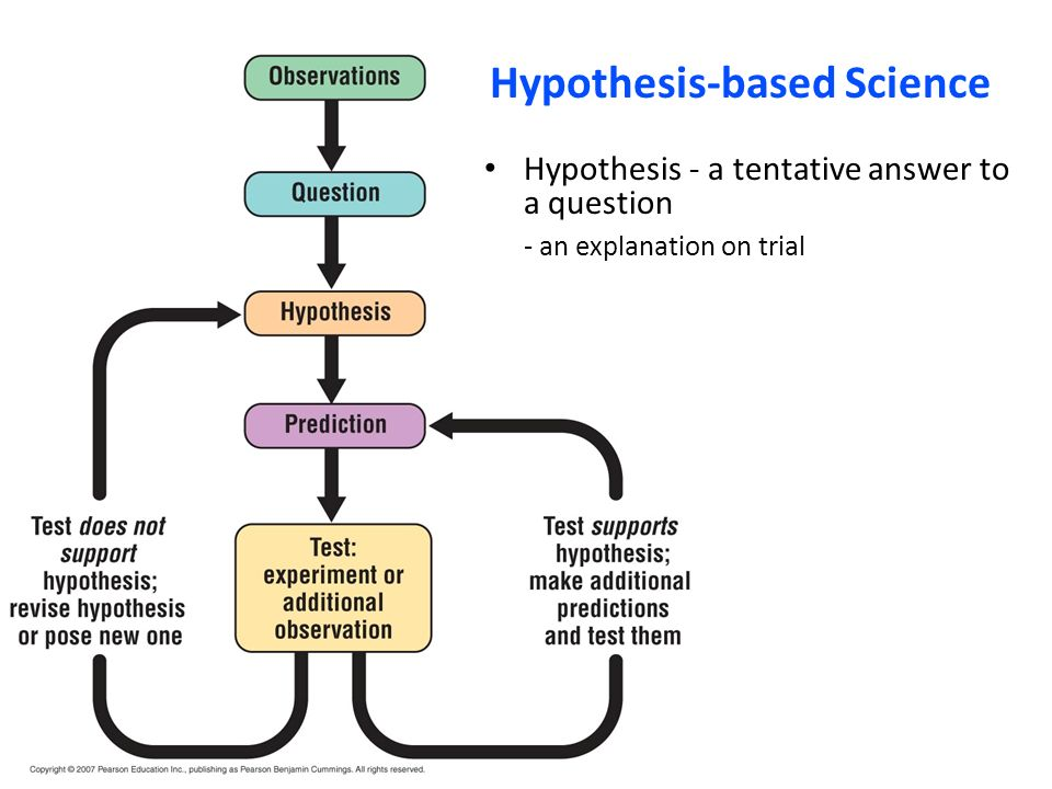 what is hypothesis based science 12 distinguish between discovery science and hypothesis based science explain from bioe 120 at university of illinois, urbana champaign.