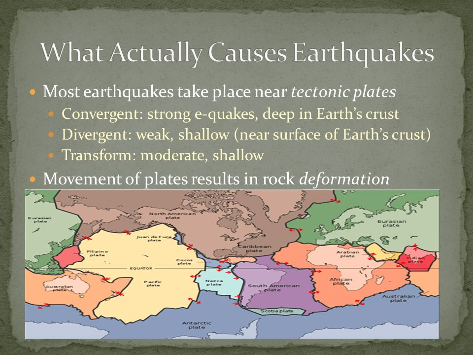Does a seismologist study
