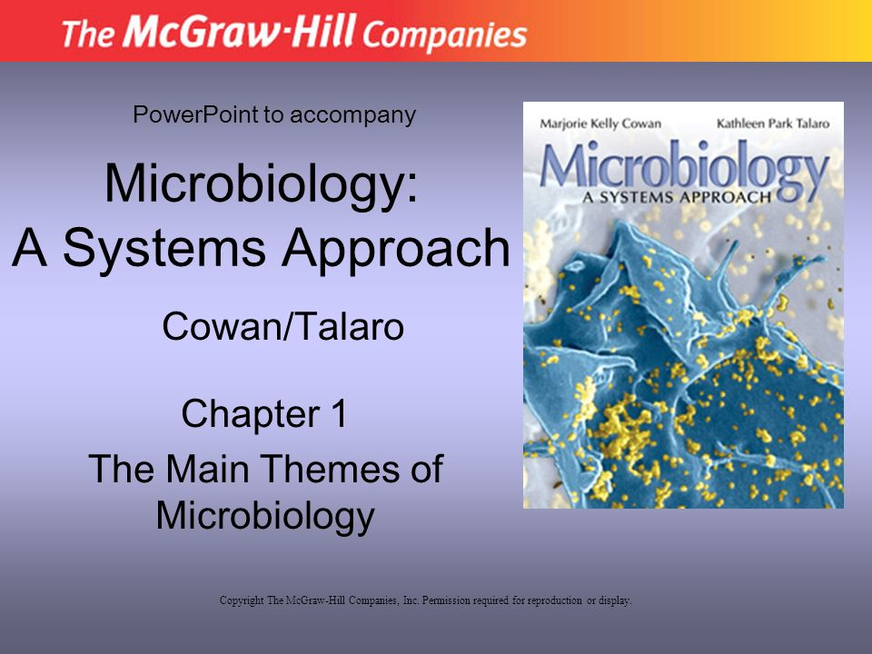 scope and importance of microbiology -scope of microbiology -importance of microorganisms -characteristics of microorganisms -history of microbiology -taxonomy 2 scope of microbiology immunology public health microbiology & epidemiology food, dairy and aquatic microbiology.
