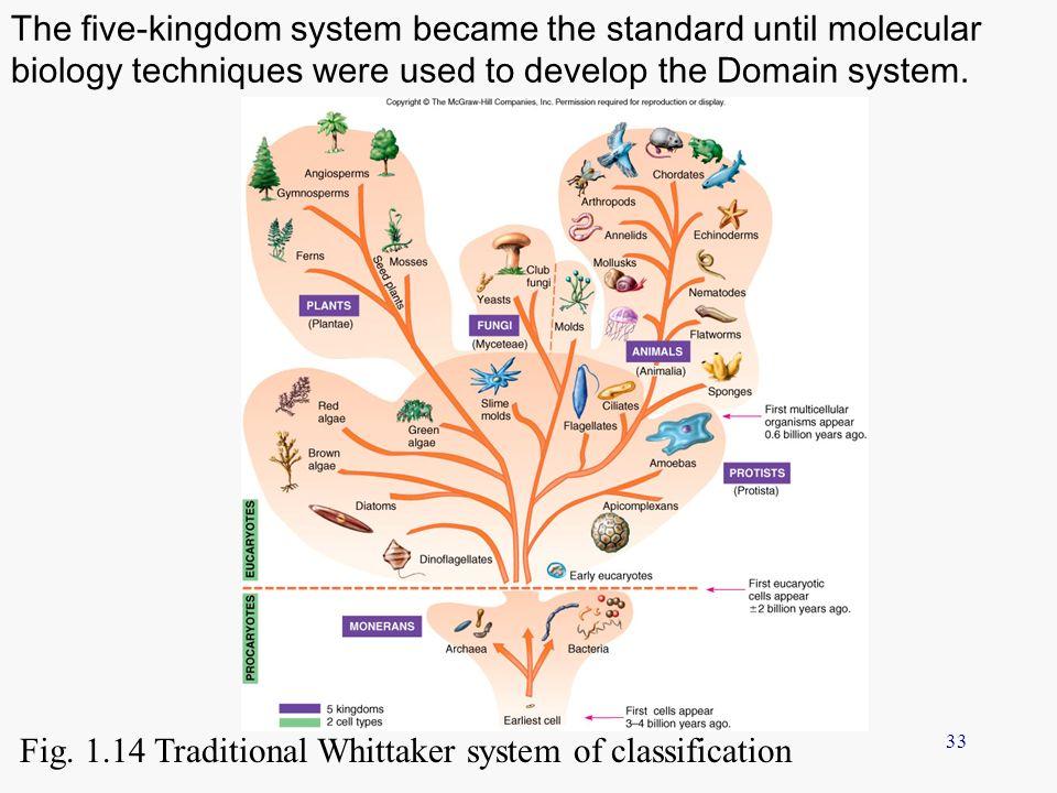 whittaker five kingdom classification pdf