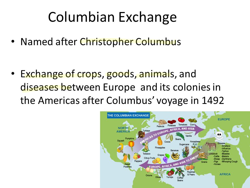 columbian exchange in america and europe Ricki fausett 2/1/17 history the columbian exchange is a global exchange of goods and ideas between the old world (europe, asia, and africa) and the new world (america.