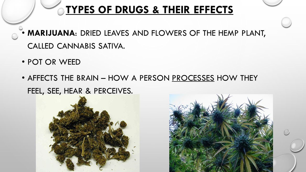 types of illegal drugs and their effects pdf
